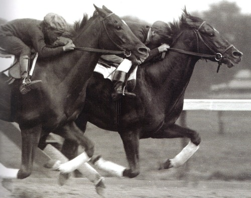 Exterminator (inside) works with stablemate Sun Briar at Saratoga, 1919.