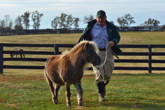 Blowen takes a jog with Old Friends family pet Little Silver Charm. (Photo via Old Friends)