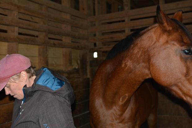 bramblewood-stables