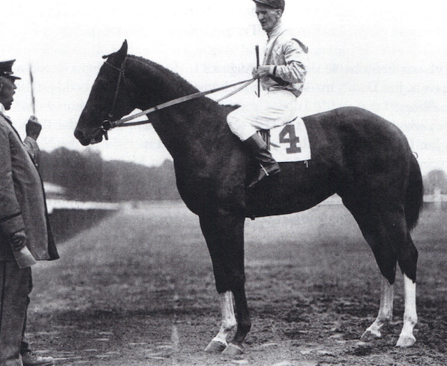 """The Giant Killer."" Upset, with jockey Johnny Loftus, following the 1919 Sanford Stakes."