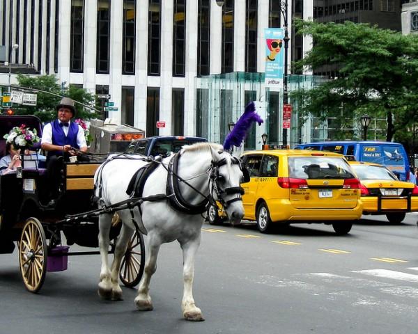 (flickr.com/Ismo/NYC transportation)