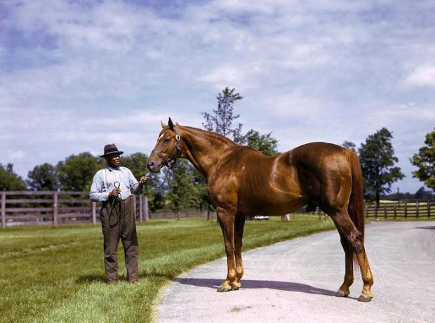 The GOAT: Man O'War (National Geographic archives).